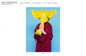 BELA BORSODI WEB SIte