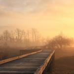 朝靄の写真(GANREFより)