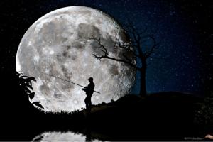 望遠レンズで撮る満月 - 500pxより