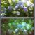 【写真補正】Lightroomプリセットで簡単におしゃれな写真を仕上げる!